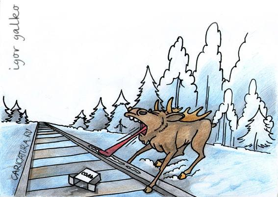 Новый способ охоты на лосей