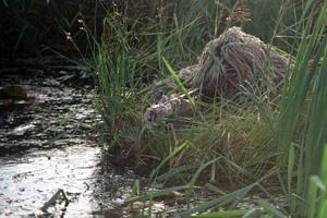 Охота на уток при помощи челна