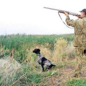 Открытие сезона охоты на уток